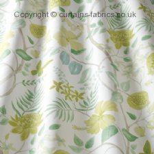 AMAZON fabric by iLIV (SWATCH BOX)