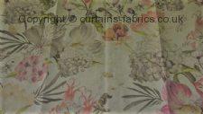 BOTANICAL fabric by BELFIELD FURNISHINGS
