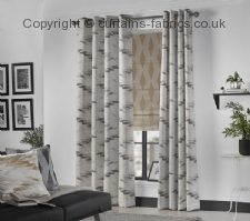 ARCADIA NEW DESIGN roman blinds by BILL BEAUMONT TEXTILES
