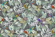 Viewing AVIARY by CHESS DESIGNS