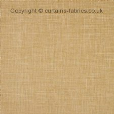 ALBANY F1098 (CHART A) made to measure curtains by CLARKE and CLARKE
