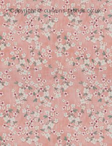 ALYSSUM fabric by CURTAIN EXPRESS